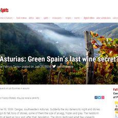 wine of asturias by wine and spirits